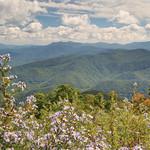 Alan CresslerFollow Wayah Bald, view looking southeast, Nantahala Mountains, Nantahala National Forest, Macon County, North Carolina