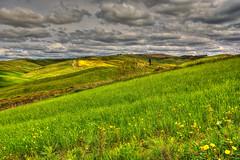 Verde Collina (giannipiras555) Tags: verde collina toscana natura fiori albero nuvole landscape panorama paesaggio nikon