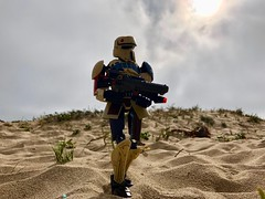 Lone Shoretrooper