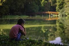 Autists' Paradise (gergely.t.springer) Tags: nikon d3500 shelter green peaceful martonvásár hungary castlepark park bridge lake magyarország adam autist paradise