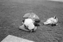 (giacomo tiberia) Tags: kentmere bessa voitglander