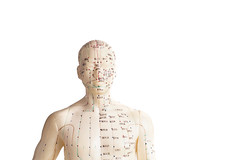 Acupuncture Model Of Human (raahacupuncture) Tags: acupressure acupuncture alternative anatomy ancient asian background backpain being biology body care chest chinese design doll dummy eastern elements energy figure head health healthcare human lifestyle medical medicine meridians model muscle needle oriental pain patient physical physicaltherapist physiotherapy physiotherapytreatment piercing point relax relaxation statue therapist therapy traditional treatment well wellbeing wellness