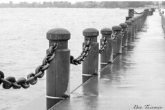 standing guard (Ben Tuinman) Tags: blackandwhite bw lake ontario nature wet weather photography lowlight waves outdoor scenic lakeside shore lakeshore pictorial rebelxti