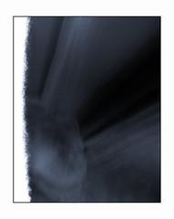 Sticks and stones (may break my bones) (blueP739) Tags: olympus om4 om1n olympusom om3ti om2sp om10 om1 om2n om3 olympusom1 orange olympusplustekplustek7200om4 plustek7200 pussy plustek vivitar19mm xtol xray bones noiretblanc noirnoir noir blackwhite bw