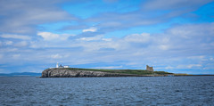 Inner Farne (littlestschnauzer) Tags: inner farne island tourist attraction birds wildlife nature 2019 uk ne coast north sea