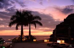 Madeira sunset (Uwe Kögler) Tags: sunset madeira flower palm palme wolken portugal atlantik calheta evening abend dämmerung meer ocean sonnenuntergang ozean abendrot