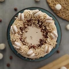 Deliziosa torta Assoluta alla NOCCIOLA! 🌰 . Una deliziosa, 😋 morbida ed umida 😍😍😍 CAKE al cioccolato bianco e NOCCIOLE  🌰🌰🌰 farcita con una GANACHE CREMOSA alle nocciole e finita con (paolaazzolina) Tags: birthday love cakelove tortadicompleanno caketutorial cakery cakedecorator cakedesign hazelnutcake paolaazzolina torta cake hazelnuts cakeporn hazelnut nocciole tortaallenocciole jlo macarons cakedesigner macaron ariel cioccolato plumcake cioccolatobianco ricette birthdaycake arianagrande whitechocolate ricetta