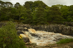 Top of Low Force Falls (CoasterMadMatt) Tags: fall waterfall force low falls waterfalls lowforce northpennines lowforcewaterfall englishwaterfalls waterfallsinengland teesdaleattractions attractionsinteesdale northpennines2019 lowforce2019 uk greatbritain england mountain mountains beauty rural river way landscape countryside europe natural unitedkingdom britain hill north hills valley rivers cascades area gb northeast cascade pennine pennines valleys tees outstanding pennineway countydurham aonb naturallandscape teesdale northeastengland naturallandscapes rivertees bowlees areaofoutstandingnaturalbeauty thepennineway june2019 penninerange june photography spring photos photographs nikond3200 2019 coastermadmatt coastermadmattphotography spring2019