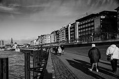 Walking on the Rhinebank (jo.misere) Tags: dusseldorf germany rijn rhine cold bw zw