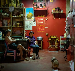 Daily Life in Chinatown (grab a pic) Tags: canoneos5dmarkiv canon eos 5d bangkok bangkokmetropolitanregion thailand 2019 yaowaratroad chinatown streetphotography outdoor outside street people portrait man woman dog