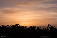 . . . and to all, a good night (Irina1010) Tags: sunset sky colors golden glow silhouettes ouarzazate morocco nature beautiful canon coth5 ngc npc