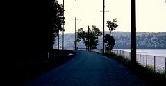 a rail trail (bluebird87) Tags: nikon n80 film kodak ektar dx0 c41 epson v600 rail trail