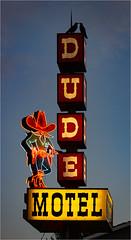 Late Night (MountainMan5000) Tags: neon sign motel birds