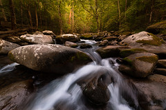 Late Summer on the Middle Prong - 2 (Dan and Holly) Tags: danandhollythompson gsmnp greatsmokymountainsnationalpark trees danandhollycom green mountains rocks stream streamscene streamscape sunset water yellow