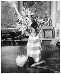 Still life on paper negative (Larry Buechler) Tags: kodak hc110 crowngraphic largeformat 4x5 stilllife ultrafine rodenstock sironar papernegative