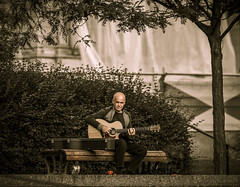 Juste pour toi (maoby) Tags: rouge juste music musique nikon d500 135mm sigma art nature parc garden park