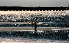 (bluebird87) Tags: beach windsurfer film dx0 c41 epson v600 kodak ektar nikon f100
