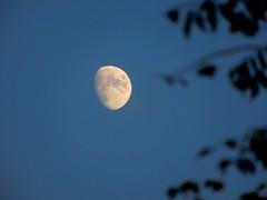 """The moon is a friend for the lonesome to talk to..."" (fl_mala) Tags: moon wonderfulworld greatshot beautifulsky ilovegreece greece greekislands discovergreece cyclades loneliness friend"