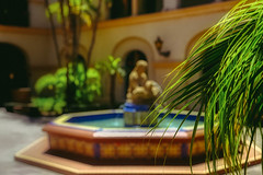 Sunkissed Retreat (Bombatron) Tags: sunkissed statue green trees fountain calm serene beautiful canon 6d 24 105