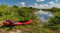 _DSC7636 (doug.metcalfe1) Tags: 2019 dougmetcalfe holandriver nature ontario outdoor summer westgwillimbury kayak kayaking