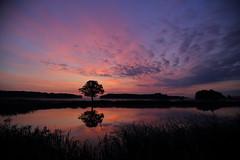 IMG_8569 (geraldtourniaire) Tags: natur nature franken mittelfranken eos6d ef 24105l sonnenaufgang 6d licht landschaft l
