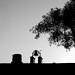 Gravestones, Bell and Tree