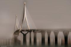 El puente - The bridge (ricardocarmonafdez) Tags: puente bridge cádiz puentedelaconstituciónde1812 puentedelapepa luces sombras lights shadows sunlight soft blur edition processing imagination imaginación creative effect nikon d850 24120f4gvr ricardocarmonafdez ricardojcf