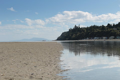 tide's coming in (annapolis_rose) Tags: beach tides sand pacificocean boundarybay washington