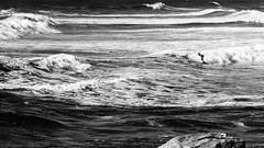 Seul dans l'univers (www.gilpivert.fr) Tags: bretagne surf mer noirblanc vagues dmcgx8 panasonic france