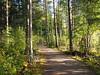 2019 Bike 180: Day 210, September 14 (olmofin) Tags: 2019bike180 finland bicycle polkupyörä keskuspuisto central park helsinki