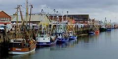 Cuxhaven - Fisher Port (cnmark) Tags: old port germany boats deutschland fishing ships hafen alter vessels cuxhaven niedersachsen lowersaxony fischerboote fischereihafen ©allrightsreserved fischereifahrzeuge nordseekai