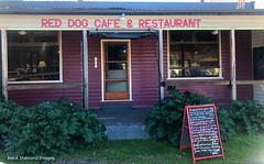 Red Dog Cafe & Restaurant, Moonan Flat, Upper Hunter Valley, NSW (Black Diamond Images) Tags: reddogcafe reddog restaurant moonanflat upperhuntervalley nsw reddogcaferestaurant australia scone iphonexbackcamera iphonex iphone bourkeback july2019 shotoniphone