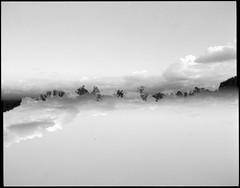 Dobbelteksponering: Aftenskyer (LarsHolte) Tags: pentax 6x7 pentax67 67ii smcpentax67 55mm f40 120 film 120film analog analogue foma fomapan fomapan200creative 200iso rodinal aph09 mediumformat blackandwhite classicblackwhite bw monochrome filmforever filmphotography ishootfilm larsholte homeprocessing denmark danmark doubleexposure multiexpo multiexposure