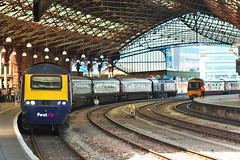 Bristol Temple Meads (MM201-910) Tags: class43 hst fgw gwr trainshed