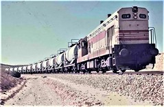 Israel Railways - Israel State Railways Class G12 diesel locomotive Nr. 114 and phosphates train (HISTORICAL RAILWAY IMAGES) Tags: israel railways train isr רכבת ישראל gm emd g12 קטר