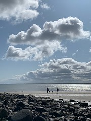 Dog walking (markshephard800) Tags: sea england sky beach clouds sand rocks northumberland alnmouth dogs sunlight reflections people