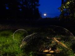 Fullmåne (evisdotter) Tags: fullmåne fullmoon evening bluehour sky nature sooc