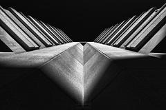 Concrete wings ((Virginie Le Carré)) Tags: architecture béton concrete contreplongée lowangleshot nb bw ombre ombreetlumière lightandshadow shadow v bordeaux meriadeck wings ailes