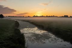 Barneveldse beek (Bert (A.H.) Roos) Tags: beek brook fog landscape landschap mist morgen morning nature natuur ochtend sunrise water weather weer zonsopgang barneveld gelderland netherlands