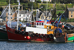 CN141 F/V Harvest Moon (Dave Russell (1.5 million views thanks)) Tags: moon fish cn boat fishing marine ship harvest vessel 141 trawler fv cn141 ocean sea west industry water canon photography eos harbor scotland photo harbour outdoor quay photograph maritime 7d western argyle quayside kintyre ecosse bute campbeltown eos7d work workboat