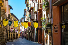 we are proud of our flags (werner boehm *) Tags: wernerboehm laseudurgell catalan spain cityscape flag katalonien catalonia