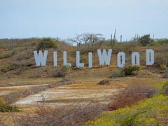 WilliWood (Seahorse-Cologne) Tags: curacao karibik portomarie williwood kakteen
