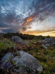 Donegal Sunset (kckelleher11) Tags: 1240mm 2019 ireland olympus september sunset donegal em1 heather omd rocks