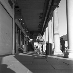 Headless Pigeon (4foot2) Tags: streetphoto streetshot street streetphotography candidportrate candid reportagephotography reportage people peoplewatching peopleofbrighton interestingpeople pigeon colonnade madeiradrive brighton shadows shadow girl hotgirl scooter analogue film filmphotography 120film mediumformat blackandwhite bw mono monochrome rolleiflex rolleiflex35c rollei hp5plus ilford ilfordhp5plus hc110 kodakhc110 kodak 2019 fourfoottwo 4foot2 4foot2flickr 4foot2photostream