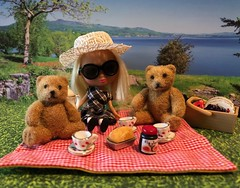 "BaD ""Gingham"" September 14, 2019 (Foxy Belle) Tags: blythe bear petite pet shop littlest grass picnic gingham calendar day september 14 2019 bad doll miniature dollhouse bows buckles glasses sunglasses hat lake"