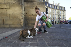 (thierrylothon) Tags: aquitaine gironde bordeaux leica leicaq2 personnage animal streetphotography phaseone captureone captureone12 collection portfolio master france