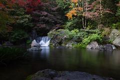 Dark waterfall (stephanexposeinjapan) Tags: japon japan asia asie stephanexpose canon 600d 1635mm osaka expo70 nature eau water waterfall cascade