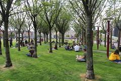 vanishing points 1 (andrevanb) Tags: amsterdam museumplein landscape architecture sveningvarandersson