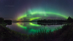 A Miracle in the dark (M.T.L Photography) Tags: auroraborealis northernlights water autumn dark night mtlphotography httpsmikkoleinonencom forest trees sky stars nightscape grass
