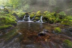 Foggy cascade (BorRojnik) Tags: cascade water waterfall green peace tranquility